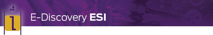 Vestige EDiscovery ESI art - purple w i