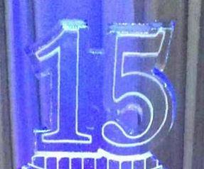 Vestige celebrates company's 15th anniversary in ice at Medina's Ice Festival